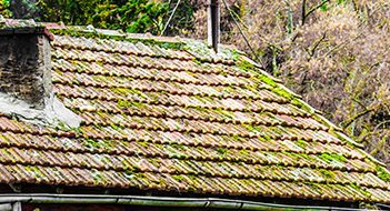 Burngreave Building Company can repair your roof including professionaly removing moss without damage to your roof